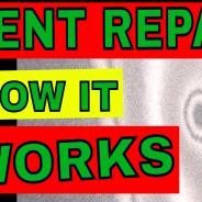 Does Paintless Dent Repair Work